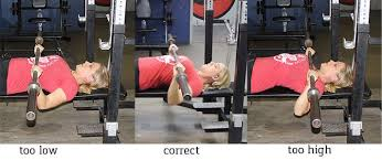 How Much Does Bench Bar Weigh What Do You Bench Strength Training 101 The Bench Press Nerd