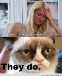 Paris Hilton Meme - funny meme paris hilton