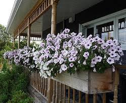 Balcony Planter Box by Build Planter Boxes Build Deck Railings Flower Planter Boxes