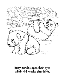 baby panda bear coloring pages