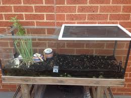 how to upcycle old fish tank into an outdoor terrarium snapguide
