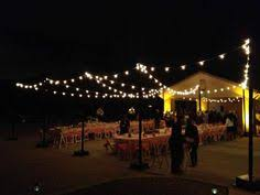 Backyard Wedding Lighting by Commercial E27 Festoon Cable At 25cm Intervals Ip44 Rated Weather