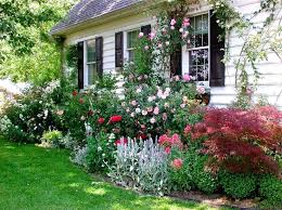 country garden plants strikingly idea cottage garden plants beautiful ideas gardens french country garden plants