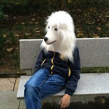 Realistic Halloween Costume Discount Dog Halloween Costumes Sale 2017 Dog Halloween