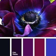 colours that go with purple indigo petals patternpod patternpodcolor color dream homes