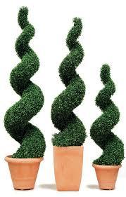 Laurel Topiary - download topiary plant solidaria garden