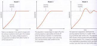 capacity optimum yesitsyomoma u0027s blog
