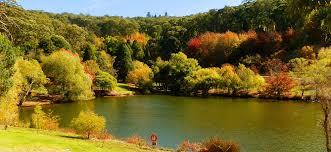 Mt Lofty Botanic Gardens Mount Lofty Botanic Gardens Lake Lakes Australia And South