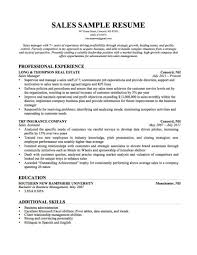 Product Owner Resume Computer Skills To List On Resume Template Examples