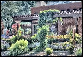 exotic garden descriptions photos advices videos home