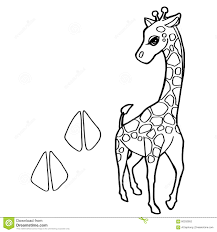 paw print with giraffe coloring pages vector stock vector image