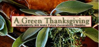 6 tips that will make your thanksgiving absolutely green ecoisms