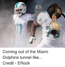 Funny Miami Dolphins Memes - images of miami dolphins suck meme fan