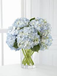 hydrangea arrangements 40 beautiful creative diy best flowers arrangement ideas
