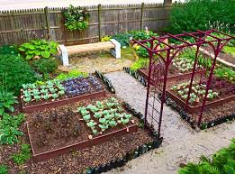 how to start a vegetable garden for beginners raised bed vegetable garden for beginners planting guide 4x8