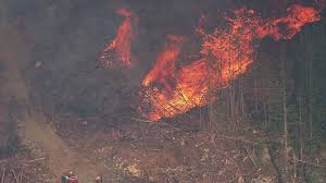 Wildland Fire News Washington State by Rain Wind Help Crews Fighting Gold Bar Wildfire King5 Com