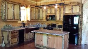 Aspen Log Cabinets And Furniture Traditional Kitchen - Kitchen cabinets nashville