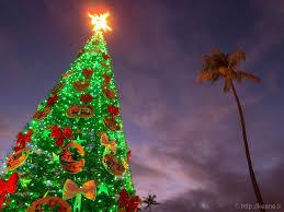 christmas in paradise honolulu city lights 2016 keane travels