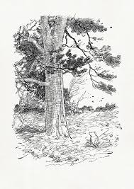 supposing a tree fell down pooh classic style poster print