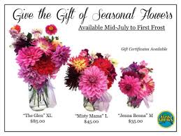 order flowers order flowers alaska grown seasonal premium cut flowers scenic