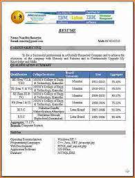 bca resume format for freshers pdf download bca resume format madrat co soaringeaglecasino us