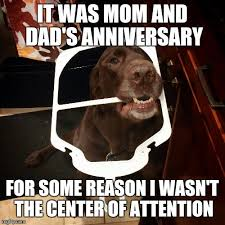 Funny Mom Memes - center of attention imgflip