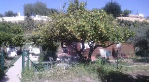 1 bed 1 bath house country house 1 bed 1 bath with land of 1800 m2 u2013 house pro spain