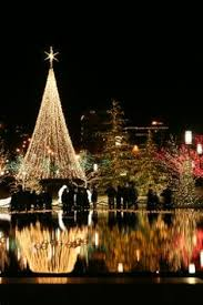 outdoor solar christmas lights christmas outdoor star tree lights