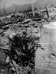 hiroshima bombing disaster efn u0027s speech introduction