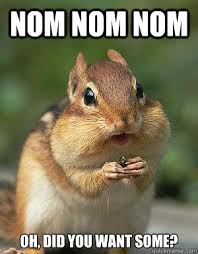 Nom Nom Nom Meme - nom nom nom oh did you want some sneaky chipmunk quickmeme