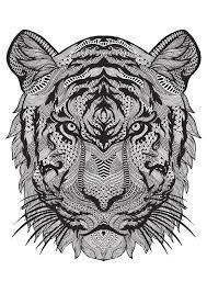 tigre u2026 pinteres u2026