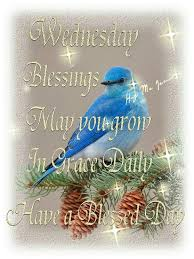 94 best wednesday blessings images on happy wednesday