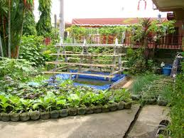 diy small vegetable garden plans