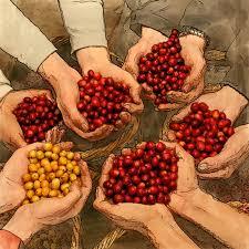 thanksgiving coffee company fort bragg ca california beaches
