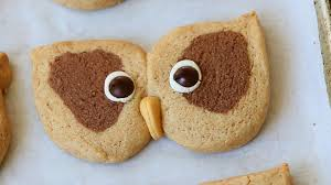 cream and cocoa owl cookies buona pappa
