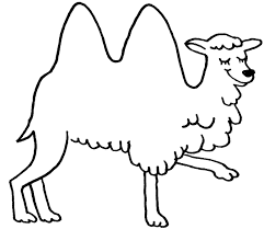 coloring camel coloring picture