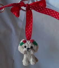 206 best i maltese dogs images on maltese dogs