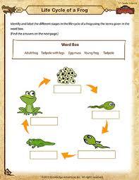 free printable 5th grade science worksheets worksheets