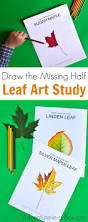 leaf shaped writing paper autumn leaf art prompt adventure in a box challenge your kids to draw the missing half of a leaf a fun autumn nature