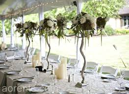 chair rental cincinnati 41 best rustic elegance images on rustic elegance