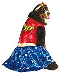 Flash Gordon Halloween Costume Amazon Dc Comics Pet Costume Medium Flash Pet Supplies