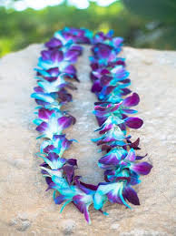 blue orchids for sale luau leis fresh hawaiian leis blue