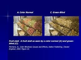 Incidence Of Color Blindness Color Vision Testing