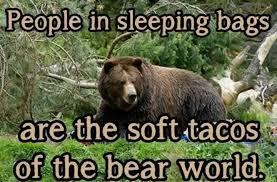 Smokey The Bear Meme - 34 most funny bear meme pictures