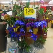 king soopers floral king soopers 18 reviews grocery 101 englewood pkwy