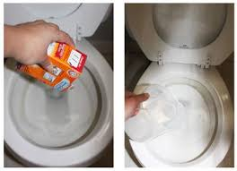 Acid For Bathroom Cleaning Best 25 Toilet Bowl Stains Ideas On Pinterest Remove Toilet