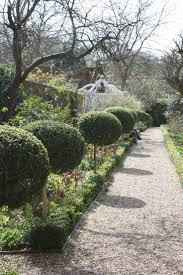 Elephant Topiary 68 Best Topiary Images On Pinterest Topiaries Topiary Garden