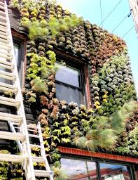 urban renewal grows in cleveland u2014 florafelt vertical garden systems