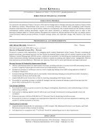 Career Objective Resume Examples by Resume Sample Finance Executive