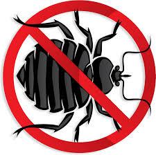 margarita time clipart bed bug exterminator rancho santa margarita ca bed bug removal